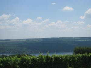 looking at keuka from Dr. Konstantin Frank's winery (my favorite one)