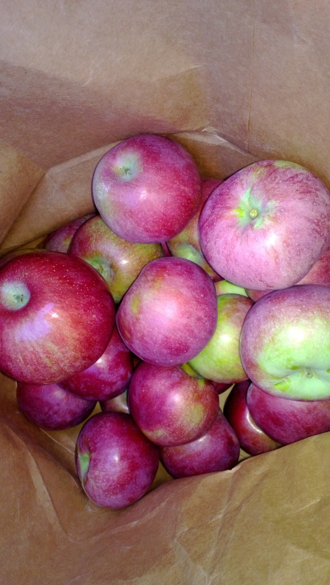Macun apples