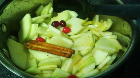 Ingredients for cranberry cinnamon applesauce in pot