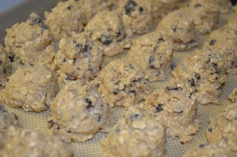 Chocolate Raisin Oatmeal Cookie Dough