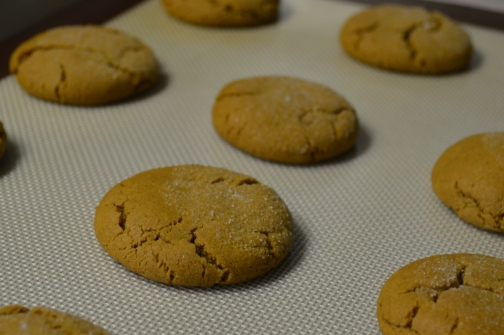 Molasses Ginger Snaps