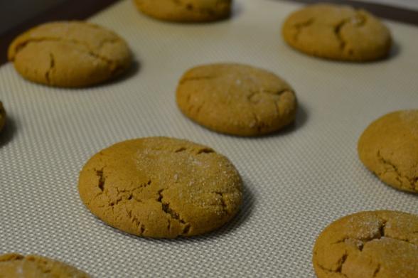 Molasses Ginger Snaps