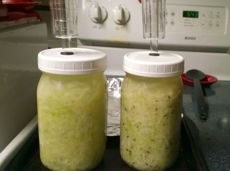 Getting sauerkraut ready to ferment for the first time!
